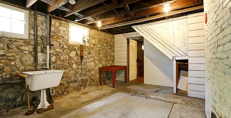 decontaminating a basement after an infestation