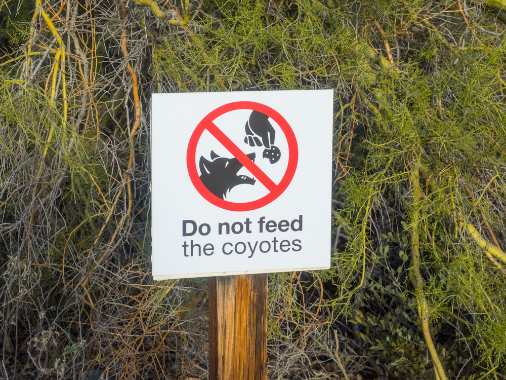 do not feed coyotes sign